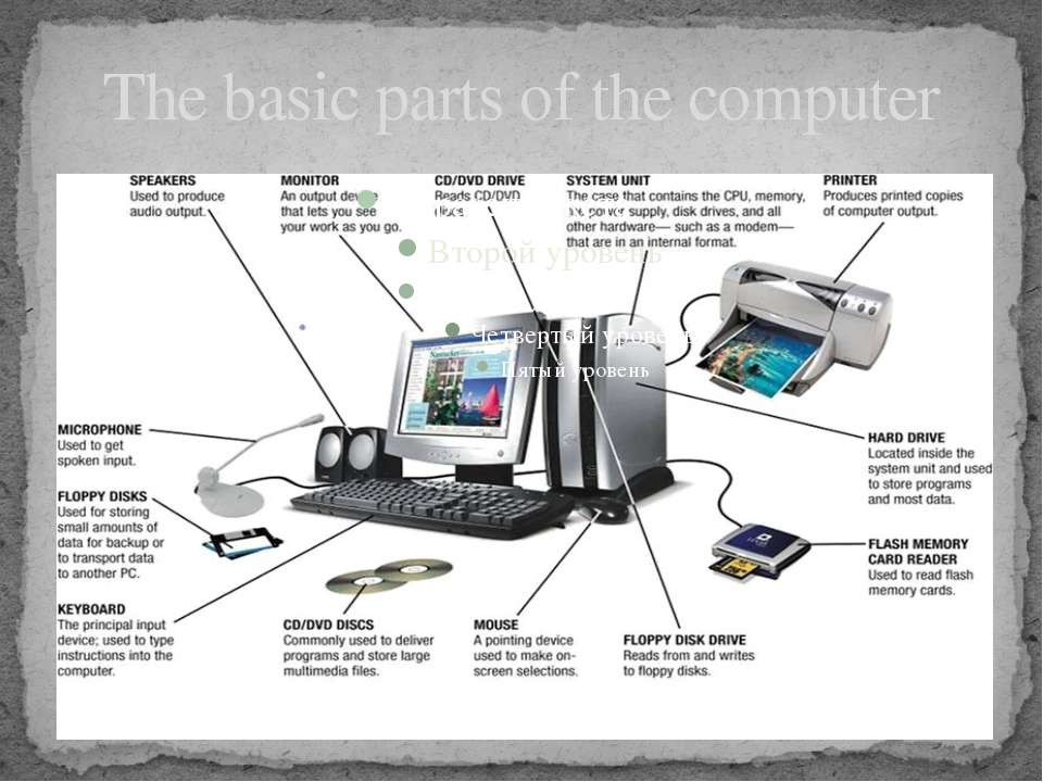 The basic parts of the computer