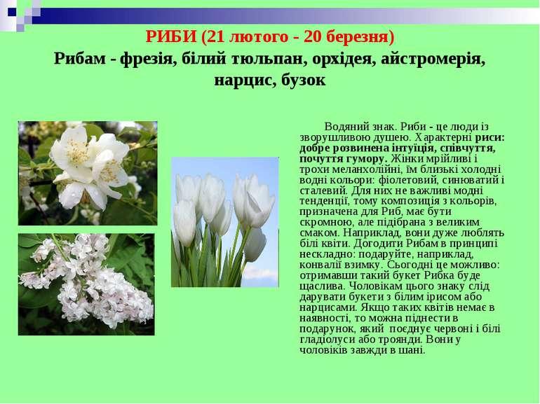 РИБИ (21 лютого - 20 березня) Рибам - фрезія, білий тюльпан, орхідея, айстром...