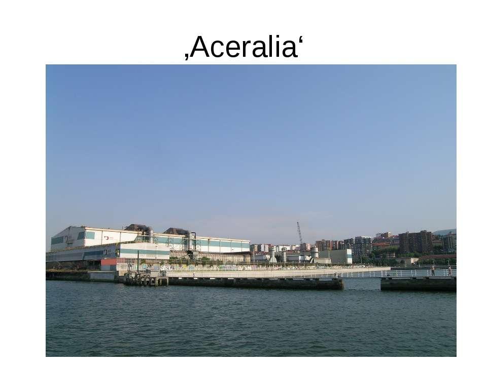 'Aceralia' (spanisch)