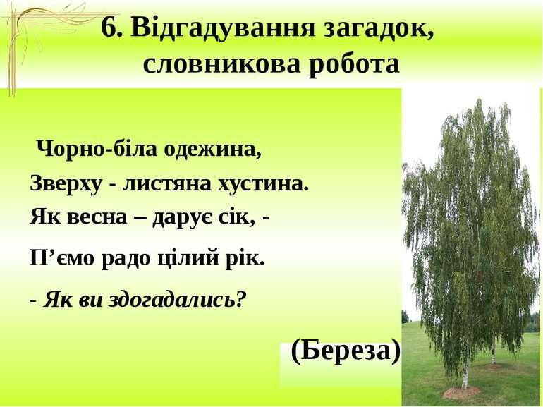 6. Відгадування загадок, словникова робота Чорно-біла одежина, Зверху - листя...