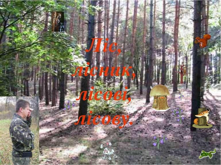 Ліс, лісник, лісові, лісову.