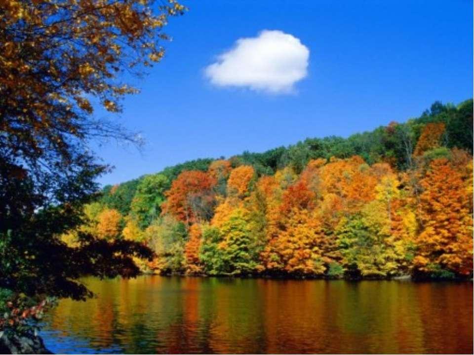 В різнобарвному намисті Діва в сяйві своїх зваб Пожовтила трави, листя, Наче ...