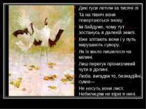 Дикі гуси летіли за тисячі лі Та на північ вони повертаються знову. Їм байдуж...