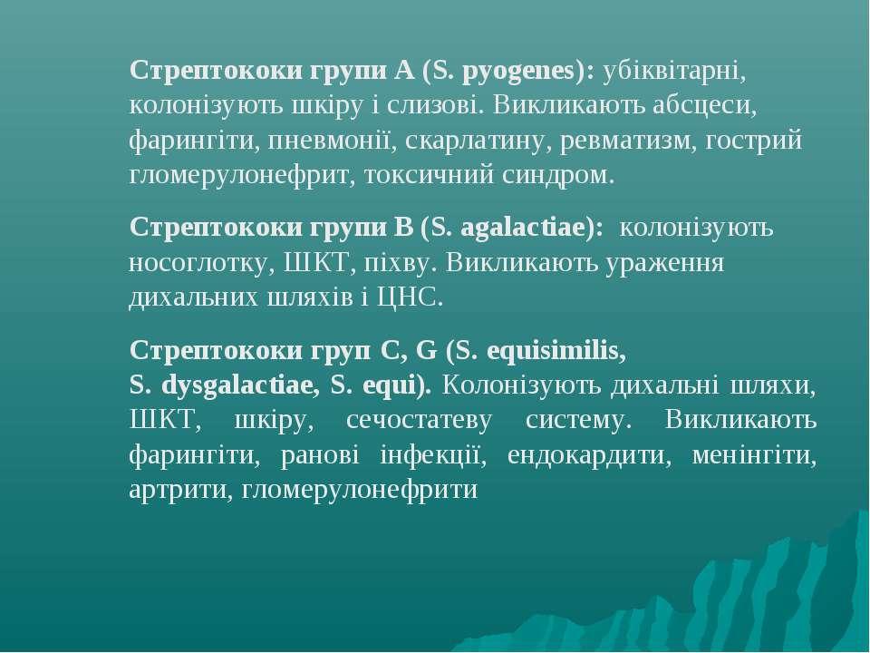 Стрептококи групи А (S. pyogenes): убіквітарні, колонізують шкіру і слизові. ...