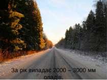 За рік випадає 2000 – 3000 мм опадів.