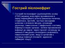 Гострий пієлонефрит Гострий пієлонефрит (pyelonephritis acuta) (ГПН) виникає ...