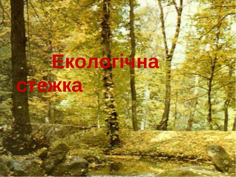 Екологічна стежка