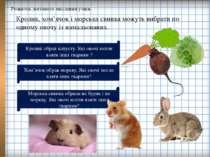 Розвиток логічного мислення учнів. Кролик, хом'ячок і морська свинка можуть в...