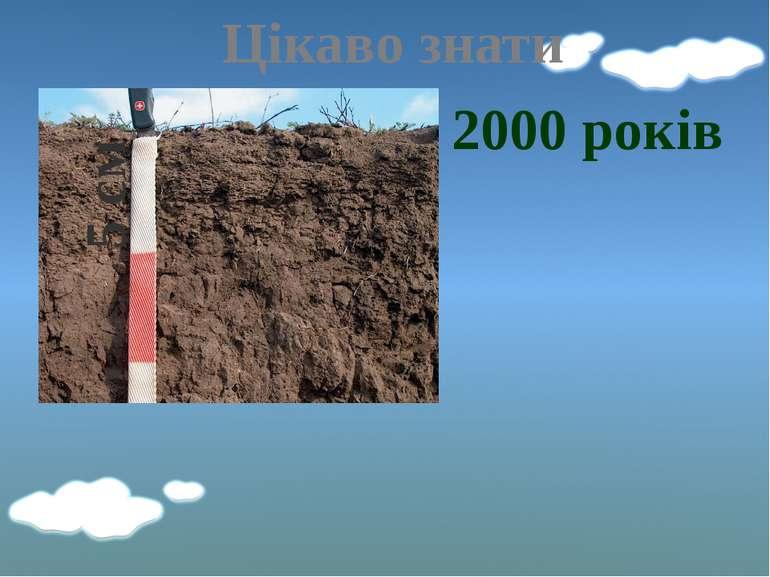 Цікаво знати 5 см 2000 років
