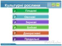 Декоративні Овочеві Зернові Бобові 5 2 3 4 Культурні рослини 1 Плодові 6 Пряд...
