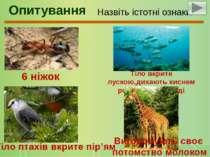 Назвіть істотні ознаки тварин на зображенні