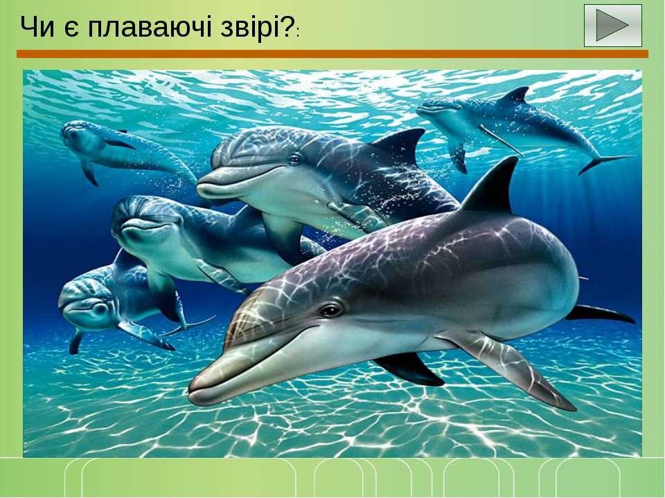 Чи є плаваючі звірі?