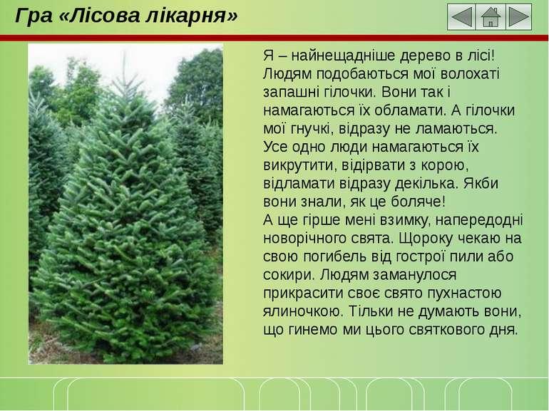 Гра «Лісова лікарня» Я – найнещадніше дерево в лісі! Людям подобаються мої во...