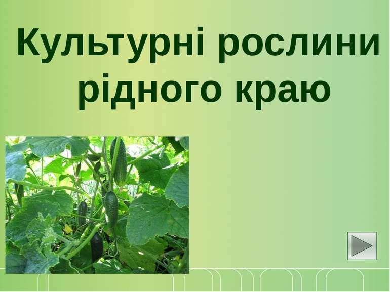 Культурні рослини рідного краю