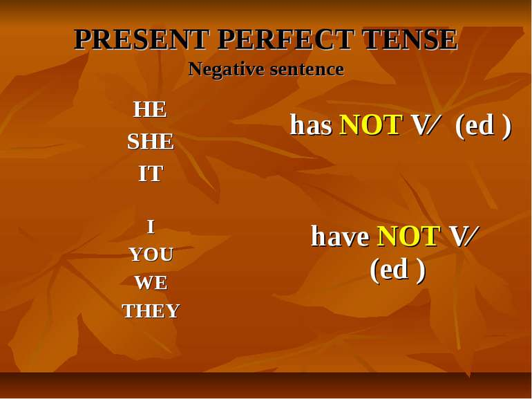 PRESENT PERFECT TENSE Negative sentence