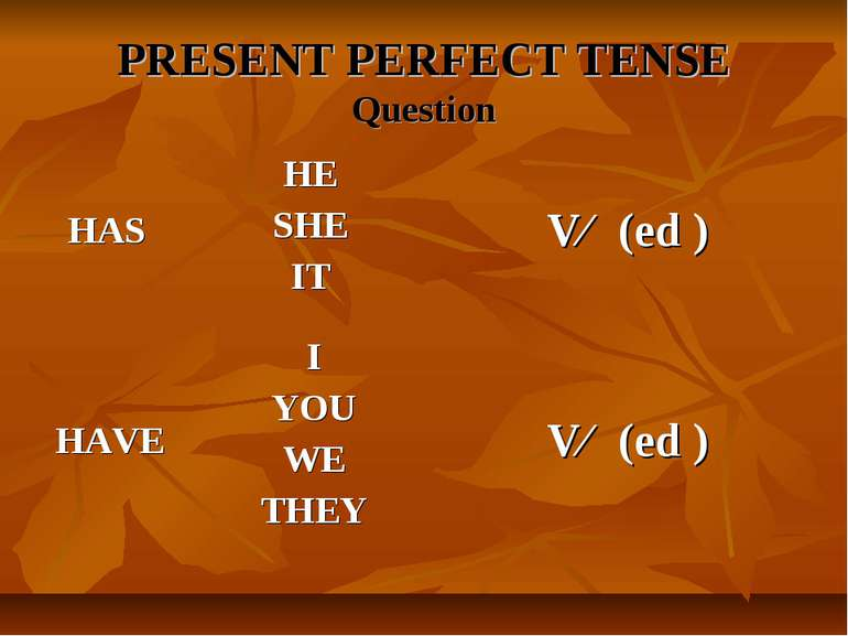 PRESENT PERFECT TENSE Question
