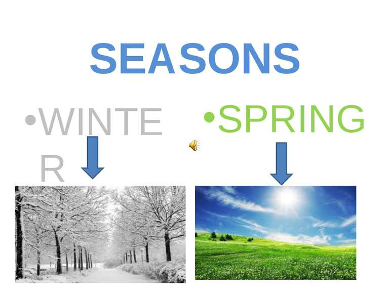 SEASONS WINTER SPRING