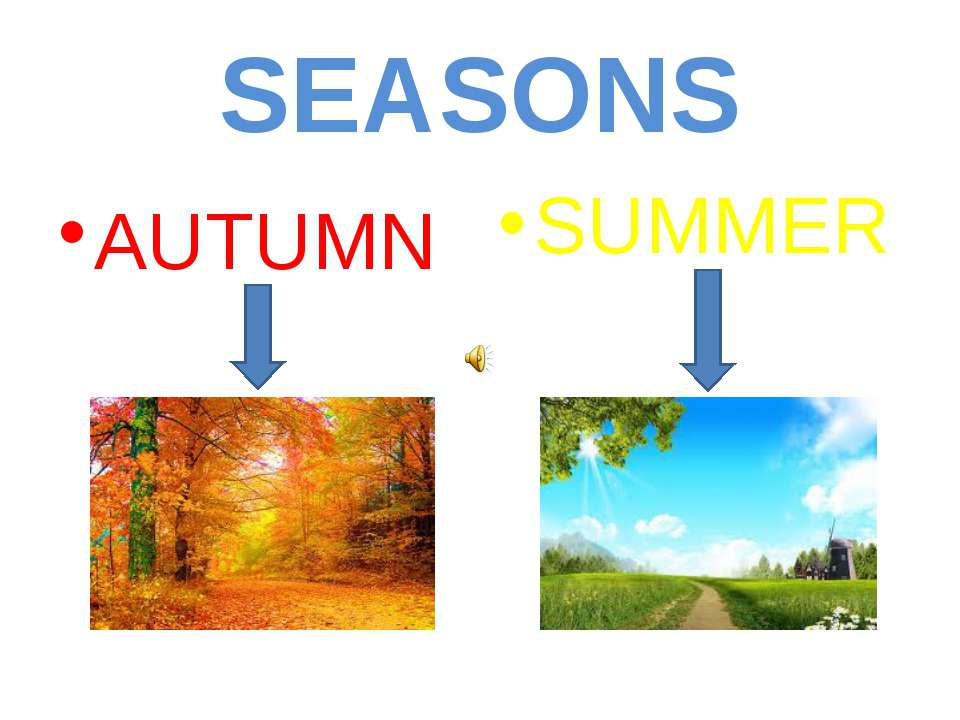 SEASONS AUTUMN SUMMER