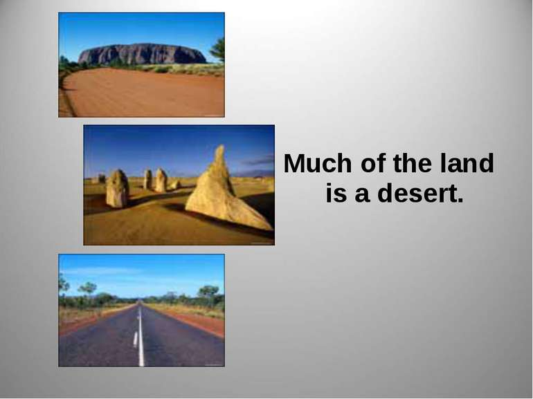 Much of the land is a desert.