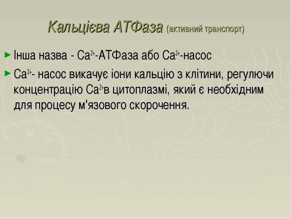 Кальцієва АТФаза (активний транспорт) Інша назва - Ca2+-АТФаза або Ca2+-насос...