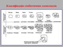 Класифікація сімбіотичних комплексів