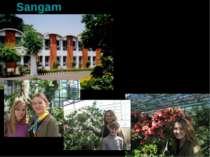 Sangam Індія. Нью-Делі. Священна тварина – КОРОВА Багатий твариний та рослинн...