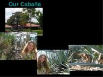 Our Cabaña Мексика. Мехіко. Центр знаходиться в горах, майже завжди суха тепл...