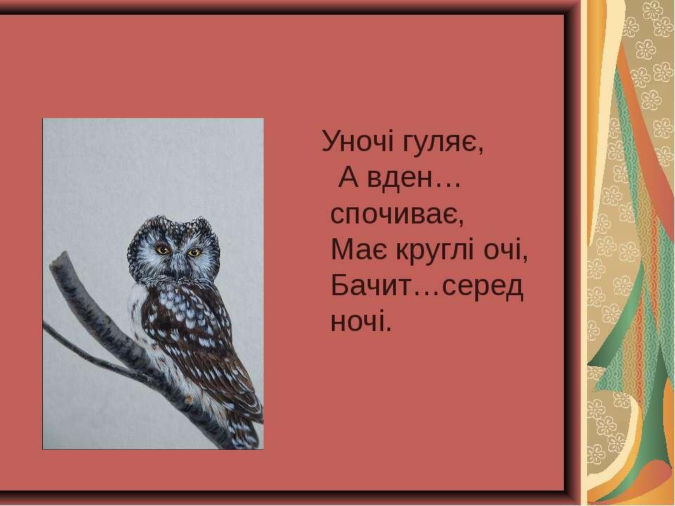 Уночі гуляє, А вден… спочиває, Має круглі очі, Бачит…серед ночі.