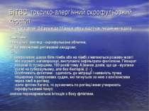 Б)ТВС токсико-алергічний скрофульозний кератит. Виникає у дітей 2-3 років до ...