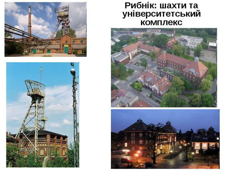 Рибнік: шахти та університетський комплекс
