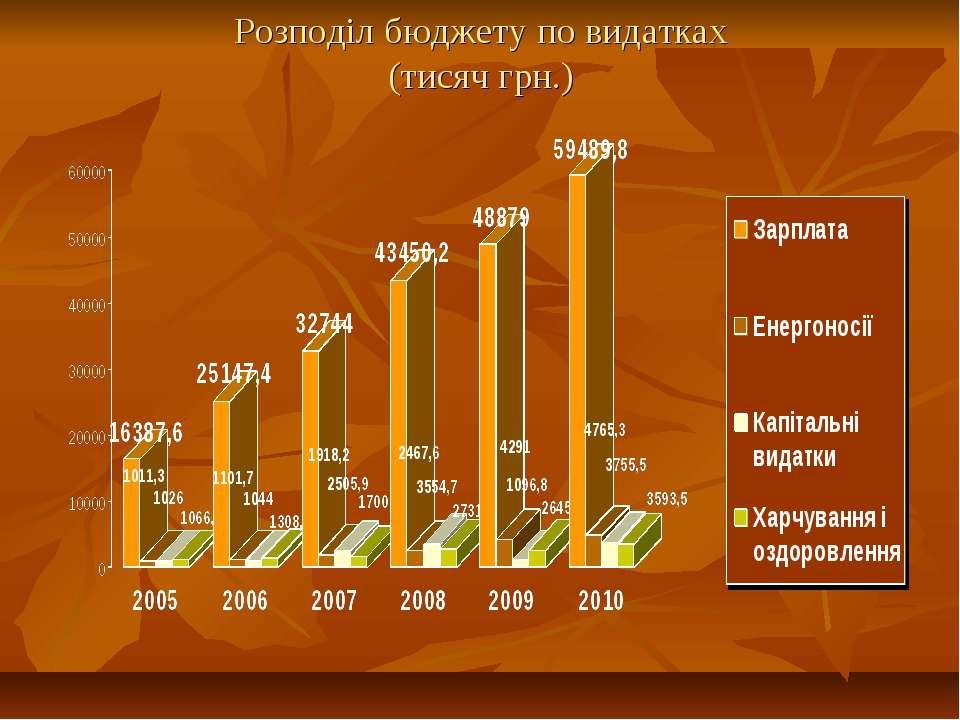 Розподіл бюджету по видатках (тисяч грн.)