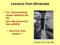 Lessons from Minamata For Environmental issues related to the life, (not only...