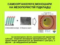 САМООРГАНІЗУЮЧІ МОНОШАРИ НА МЕЗОПОРИСТІЙ ПІДКЛАДЦІ Ці наноматеріали містять н...