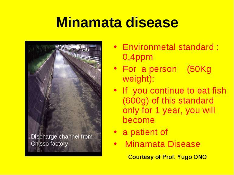 Minamata disease Environmetal standard :0,4ppm For a person (50Kg weight): If...