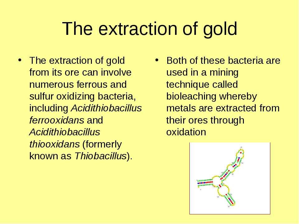 The extraction of gold The extraction of gold from its ore can involve numero...