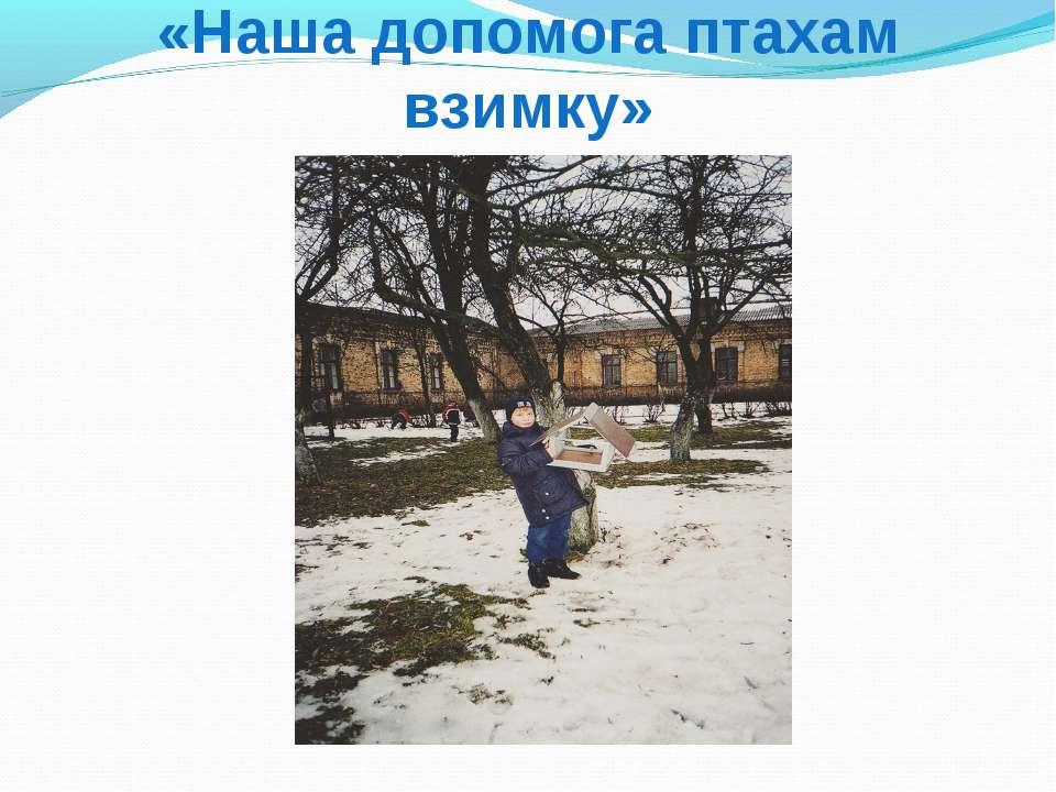 «Наша допомога птахам взимку»