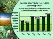 Валова продукція сільського господарства
