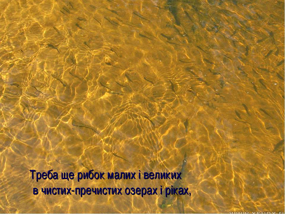 Треба ще рибок малих і великих в чистих-пречистих озерах і ріках,