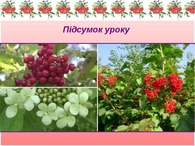 Підсумок уроку Є дерева високі, гарні, з солодкими й соковитими плодами. Кали...