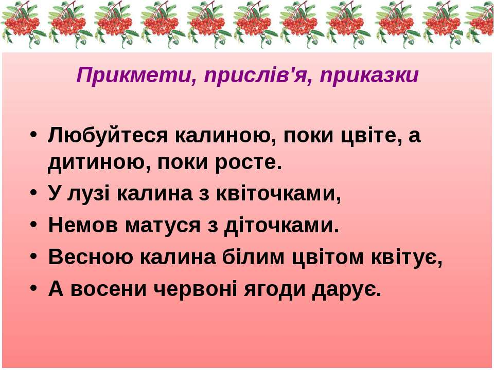 Прикмети, прислів'я, приказки Любуйтеся калиною, поки цвіте, а дитиною, поки ...