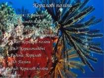 Коралові поліпи Імперія: Клітинні Надцарство: Еукаріоти Царство: Тварини Тип:...