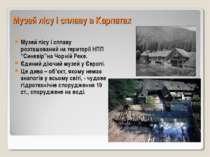 Музей лісу і сплаву в Карпатах Музей лісу і сплаву розташований на території ...