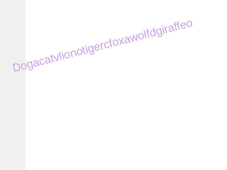 Dogacatvlionotigercfoxawolfdgiraffeo