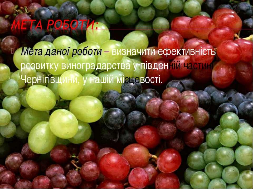 Мета даної роботи – визначити ефективність розвитку виноградарства у південні...