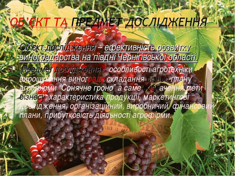 Об'єкт дослідження – ефективність розвитку виноградарства на півдні Чернігівс...