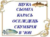 ЩУКА СЬОМГА ОСЕЛЕДЕЦЬ СКУМБРІЯ В 'ЮН КАРАСЬ