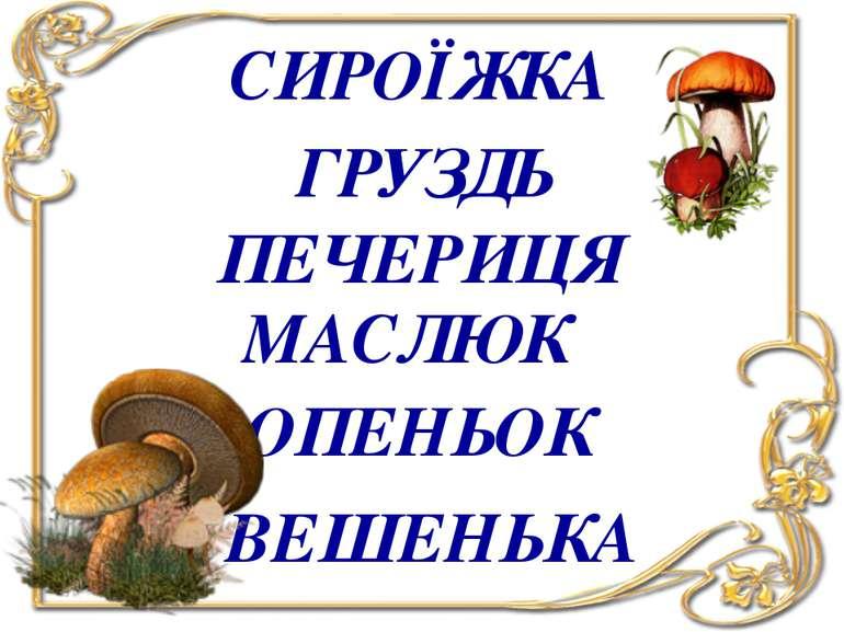 СИРОЇЖКА ГРУЗДЬ ПЕЧЕРИЦЯ МАСЛЮК ОПЕНЬОК ВЕШЕНЬКА