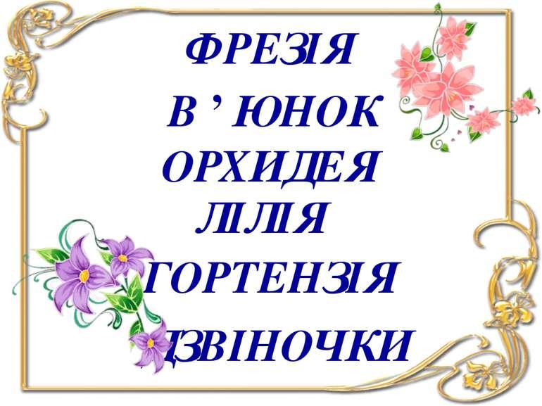 ФРЕЗІЯ В ' ЮНОК ОРХИДЕЯ ЛІЛІЯ ГОРТЕНЗІЯ ДЗВІНОЧКИ