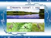 Співають солов'ї і над Дінцем, А кримського почуєш – голосніший.