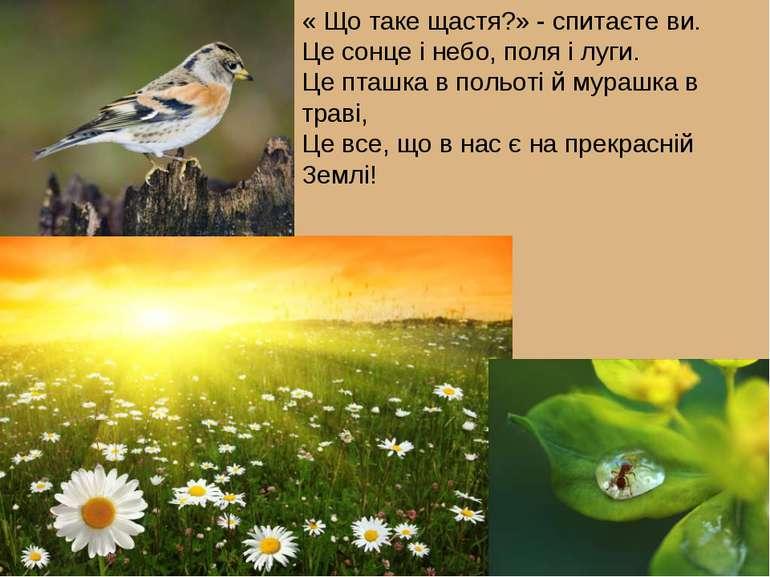 « Що таке щастя?» - спитаєте ви. Це сонце і небо, поля і луги. Це пташка в по...